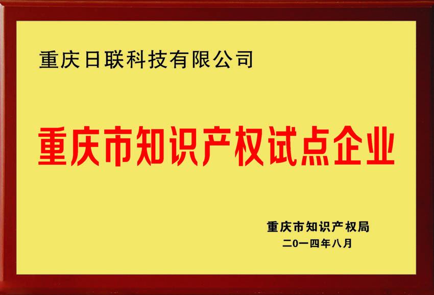 重庆知识产权试点企业